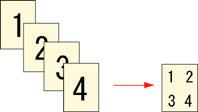 2in1.jpg